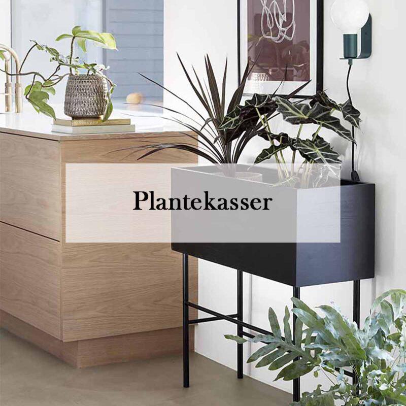 Plantekasser