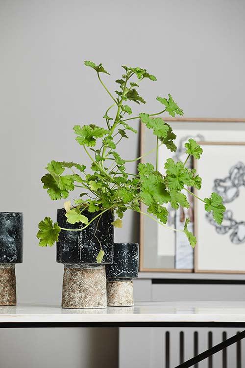 Nordal Reso urtepotte small i håndlavet keramik med rustik finish i sort og hvid
